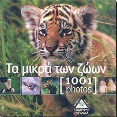 1001 PHOTOS ΤΑ ΜΙΚΡΑ ΤΩΝ ΖΩΩΝ