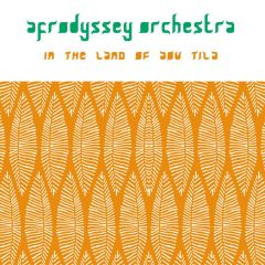 AFRODYSSEY ORCHESTRA / IN THE LAND OF AOU TILA - LP 180gr